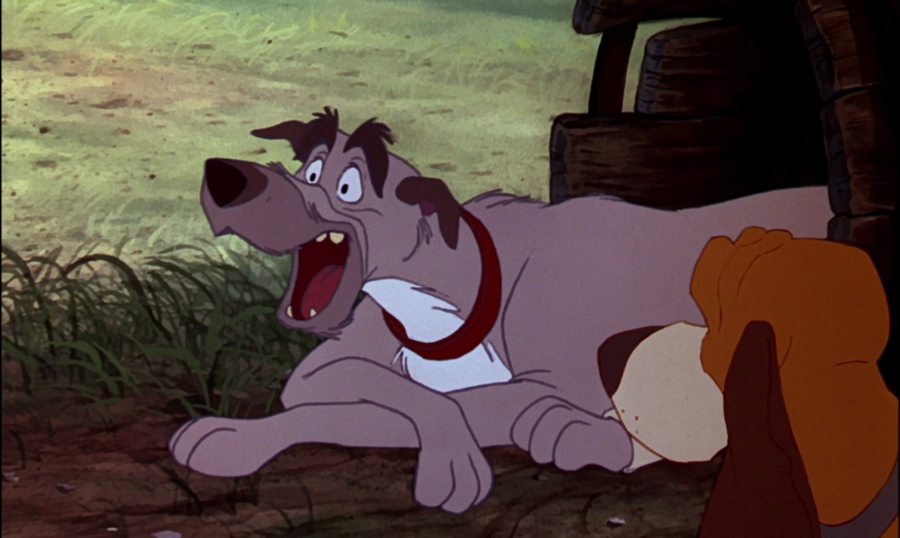 the fox and the hound The bear is the main antagonist of the 1981 animated movie the fox and the hound the bear doesn't tolerate intruders if they do so he'll will kill them the bear has red eyes and black fur and lives in the game preserve.