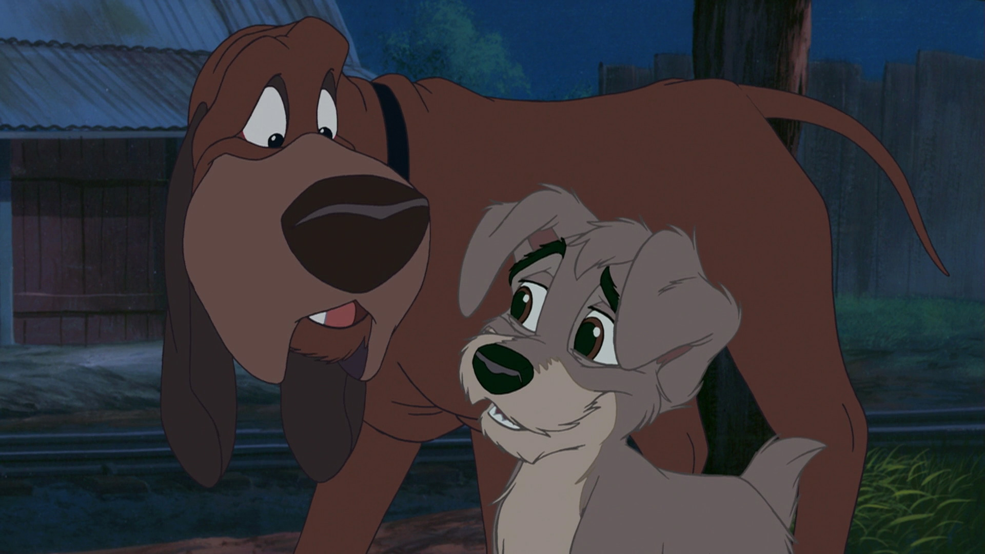 Lady And The Tramp II Scamp's Adventure 2001 …